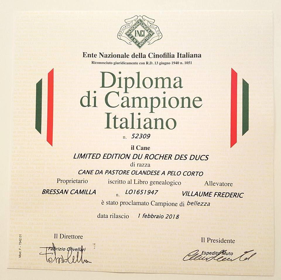 Du Rocher Des Ducs - Championne d'Italie !