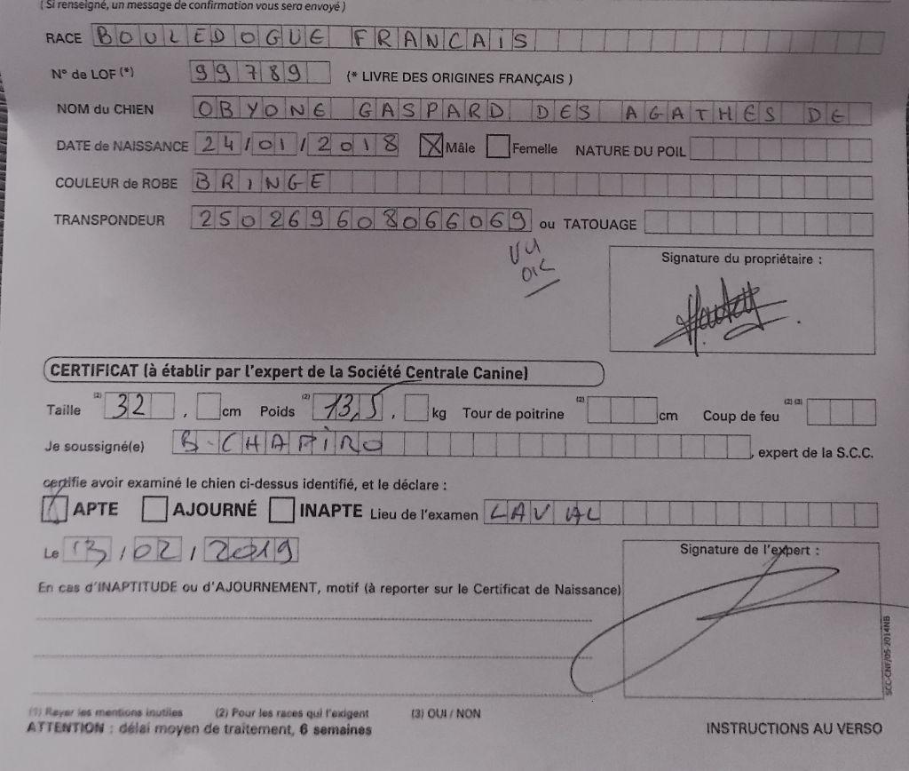 Des Agathes De Chamrouge - CONFIRMATION OBYONE