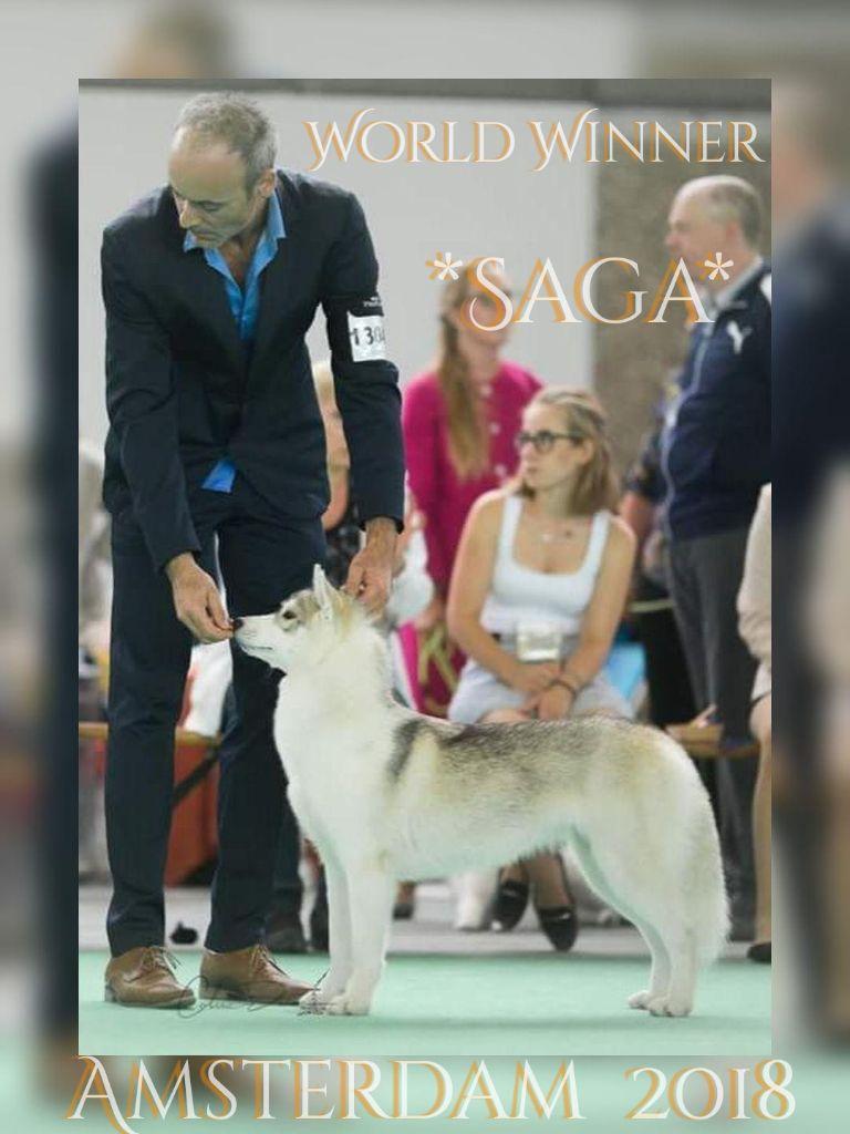 of nashkaia - Championne du monde Puppy