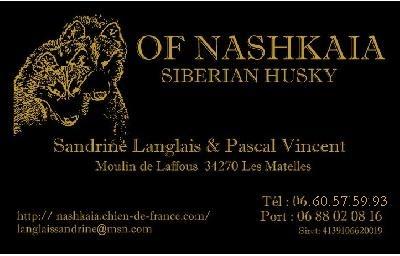of nashkaia