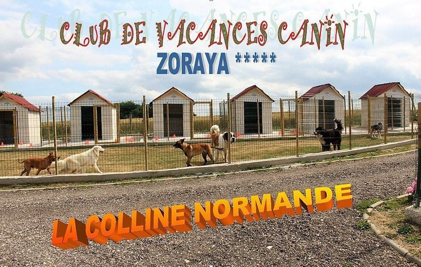 Photo CLUB DE VACANCES DE LA COLLINE NORMANDE