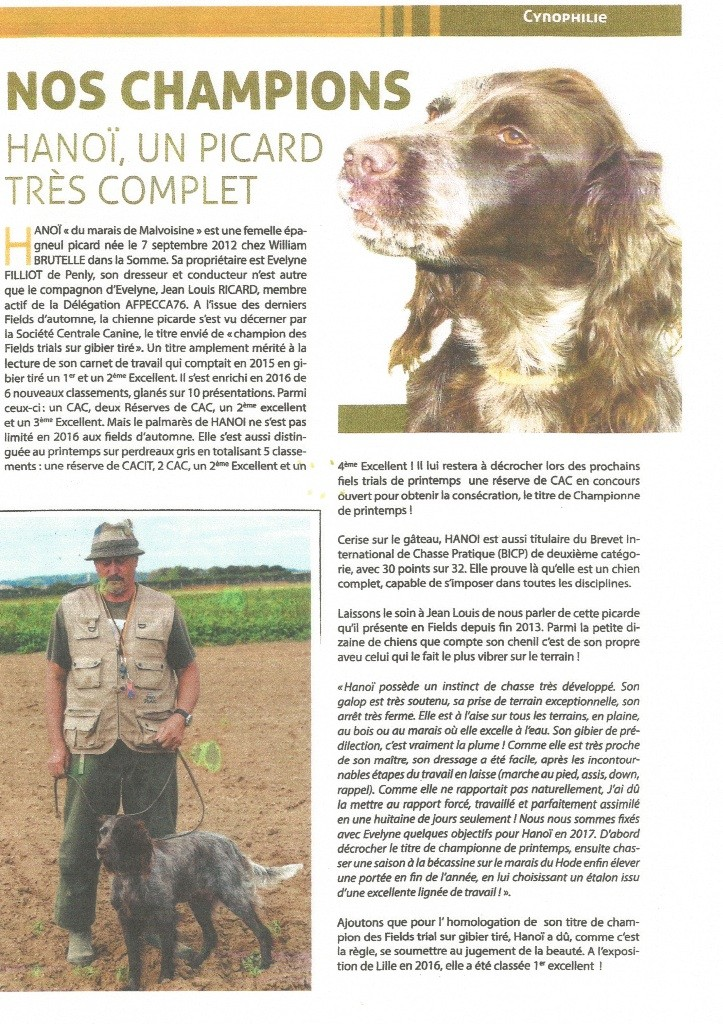De La Forge Des Evoissons - INFOS CHASSE 76  Hanoï du Marais de la Malvoisine à l'honneur
