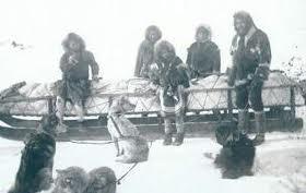 Accueil elevage des l gendes nordiques eleveur de chiens siberian husky - Definition d histoire ...