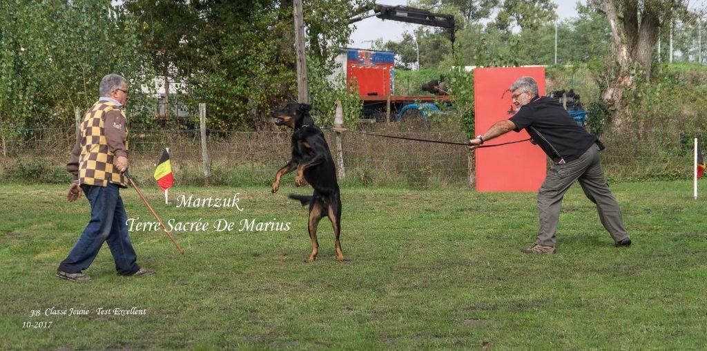 Martzuk De La Terre Sacrée De Marius