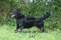 Jokô De La Terre Sacrée De Marius - 3 ieme EXCELLENT classe ouverte