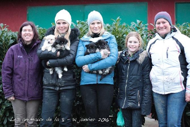 Aegirsson - Les animaux de la 8 - les finnois