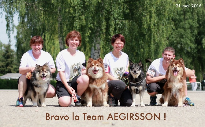 Pipsa, Earny, Elwing et Thorgal sont la Team Aegirsson 2016!