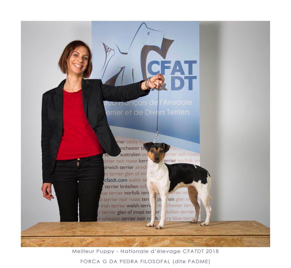 Publication : Earthwater  Auteur : Mathilde Mentreka