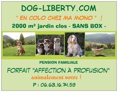 Du Coeur De La Pastourelle - DOG LIBERTY. Pension familiale SANS BOX. 2000 m² clos