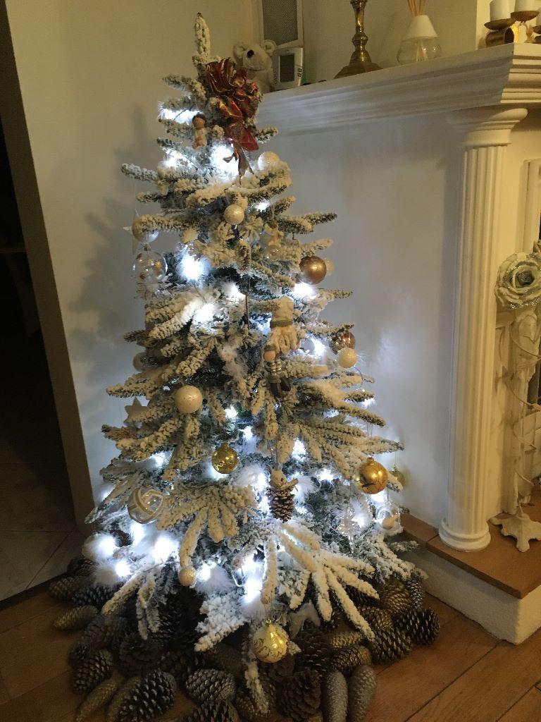 des Jardins de Bagatelle - joyeux Noël à tous