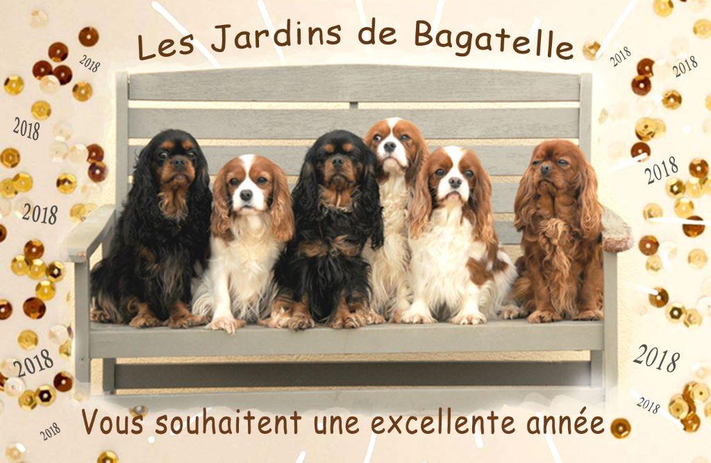 des Jardins de Bagatelle - Merveilleuse année à tous