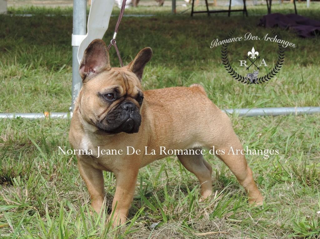 De La Romance Des Archanges - Exposition Septembre 2017