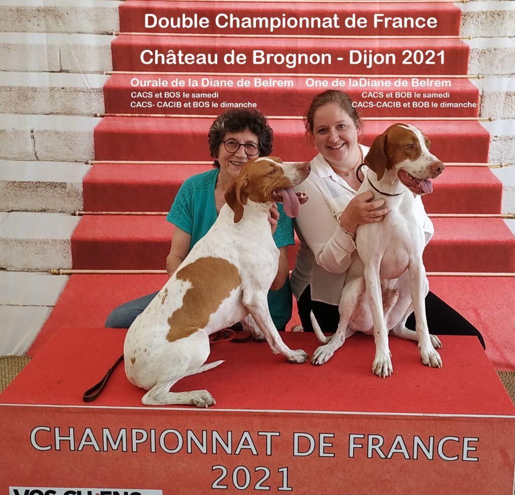 De la diane de belrem - Excellent doublé au championnat de France à Dijon !