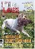 - Le Braque Saint Germain race du mois de Chien de chasse