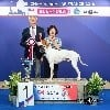 - Issan, meilleur chien du 7ème groupe au championnat de France !