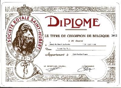 du manoir des presles - DANDY CHAMPION DE BELGIQUE.............