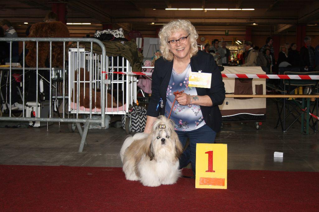 De Gibedemeaux - Expo Charleroi Belgique 2017