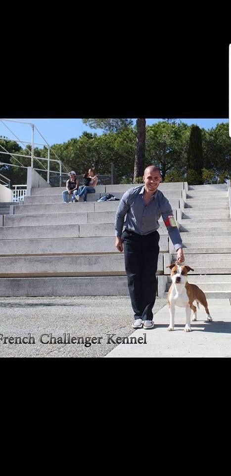 French Challenger Ollywood ranger