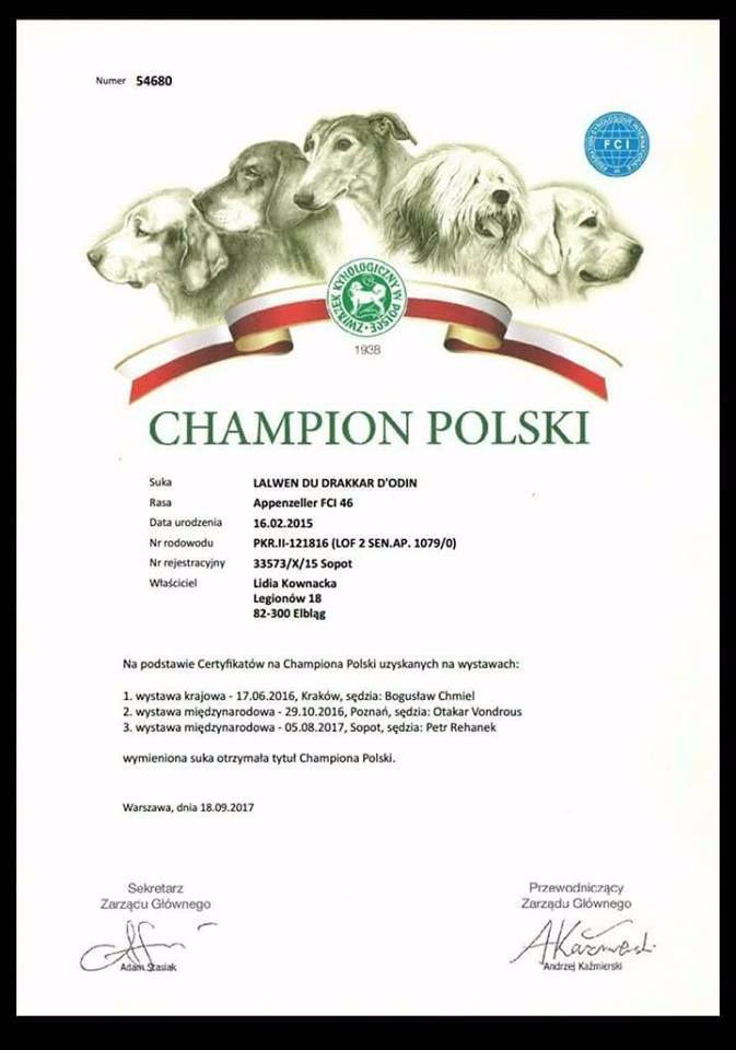 du Drakkar d'Odin - Lalwen du Drakkar d'Odin championne de Pologne