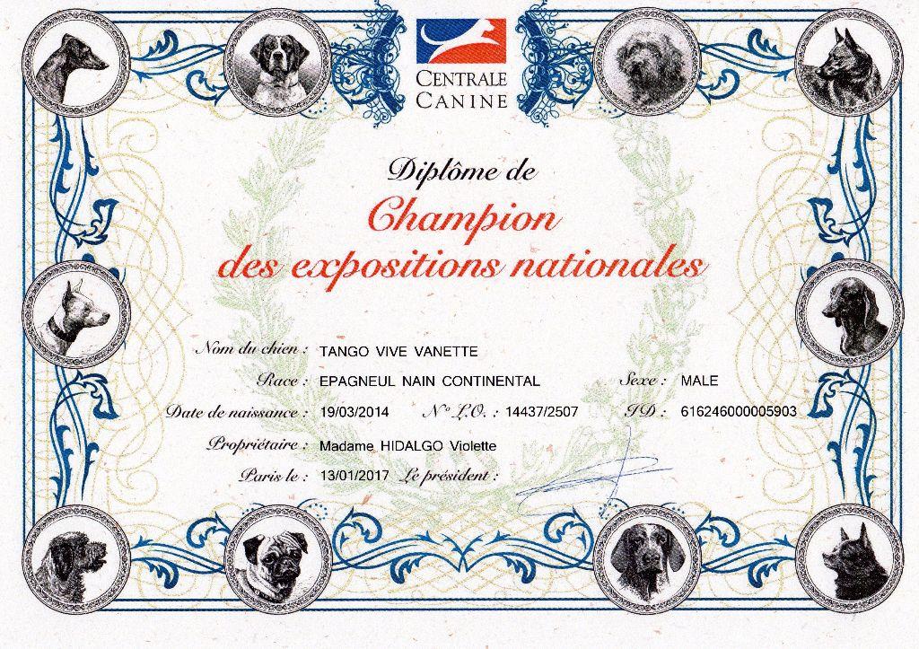 Des Princes De Jade - Champions des Expositions Nationales