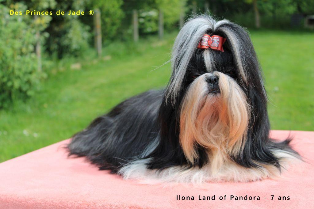 Ilona dite isée-miss Land Of Pandora