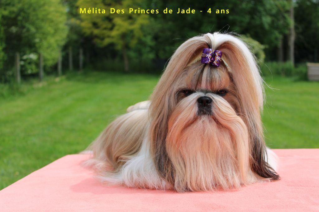 Mélita Des Princes De Jade