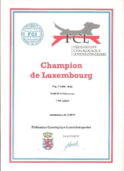 CH. Iseult De La Schumeraie