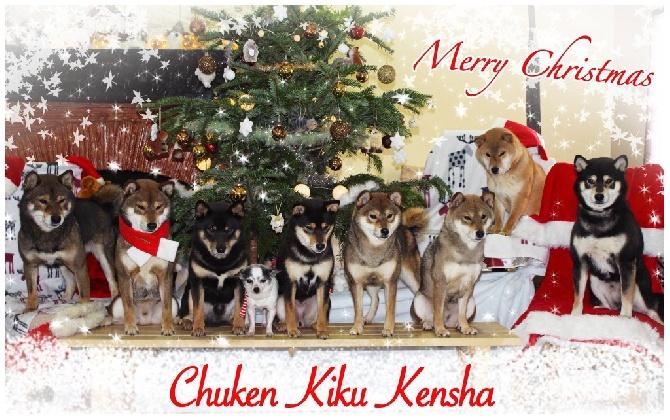 Go Chuken Kiku Kensha - JOYEUX NOEL !!!!