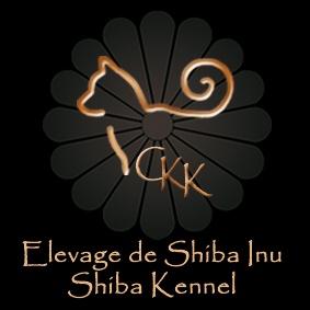 Go Chuken Kiku Kensha