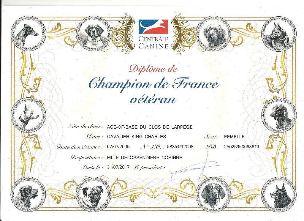 Du clos de larpege - ACE OF BASE CHAMPIONNE FRANCE VETERAN
