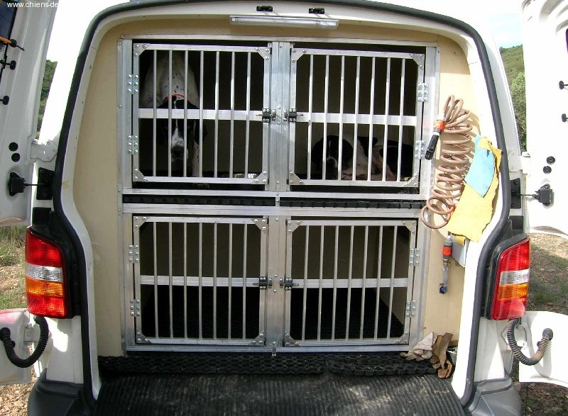 Amenagement Vehicule Pour Chien photo - elevage du mas du zouave - eleveur de chiens pointer