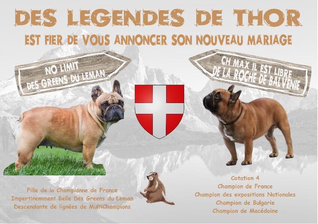 Des Legendes De Thor - Nous sommes Là....  et OUI du Fauve  3 Mâles & 2 Femelles