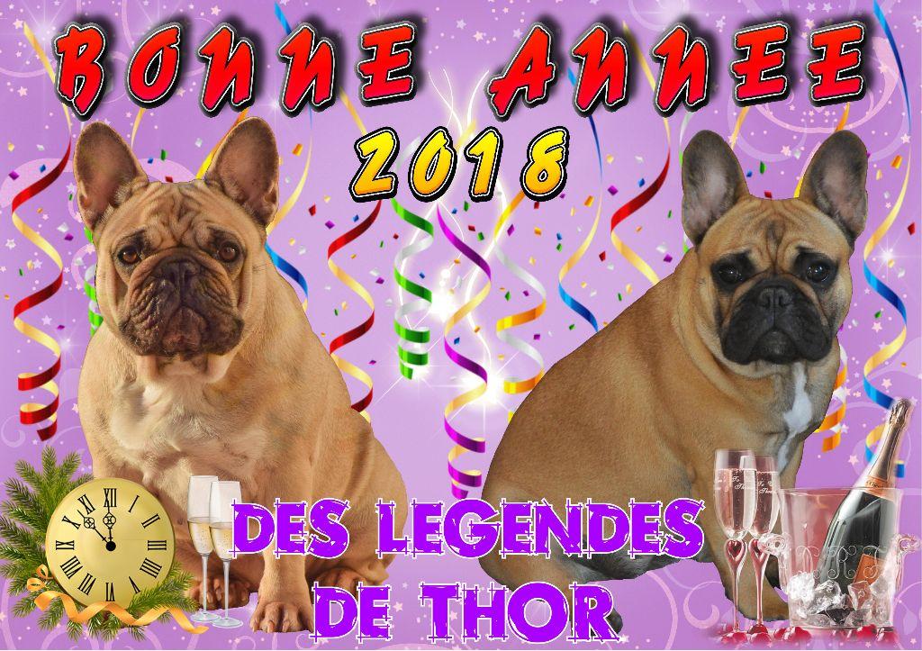 Des Legendes De Thor - Bonne et heureuse année 2018