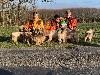 - Brevet E Haut Limousin 2020