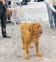 Ms fyrsta prime De Privadiis