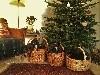- Joyeux Noël !