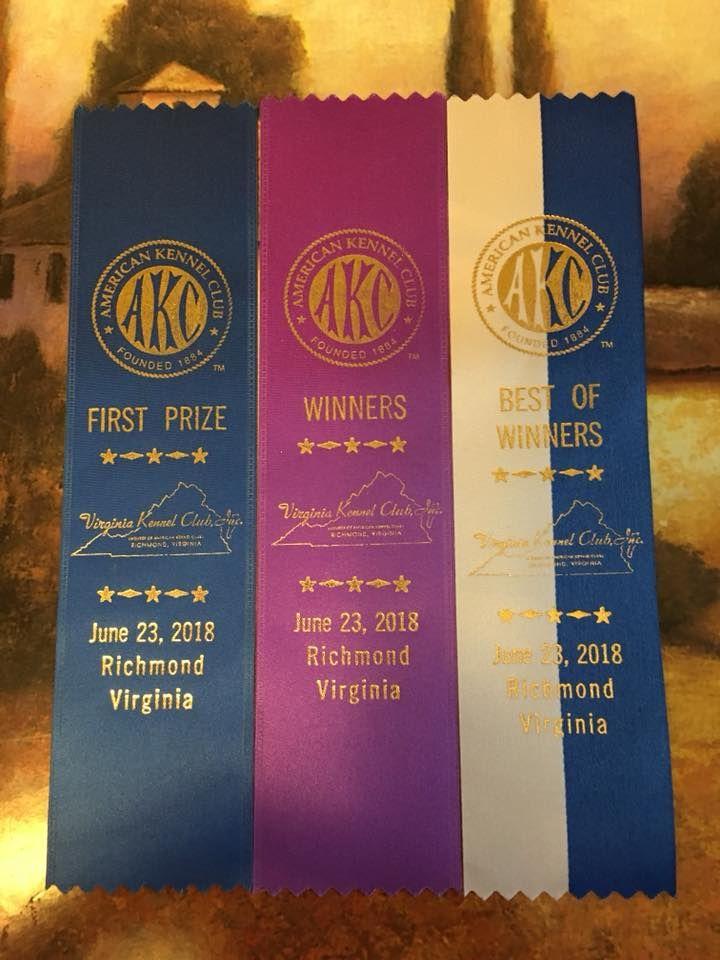 Antonius Vertragus - Nairobi Best of Winners in Richmond (USA)