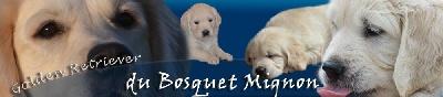 Du Bosquet Mignon
