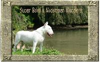 Midsomer murders Super bowl's