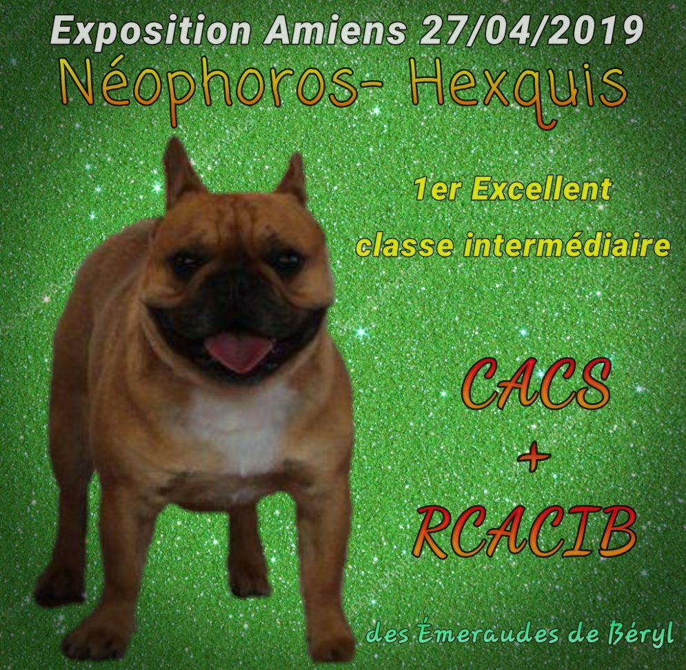 Des Emeraudes De Béryl - Exposition internationale Amiens - 27 avril 2019