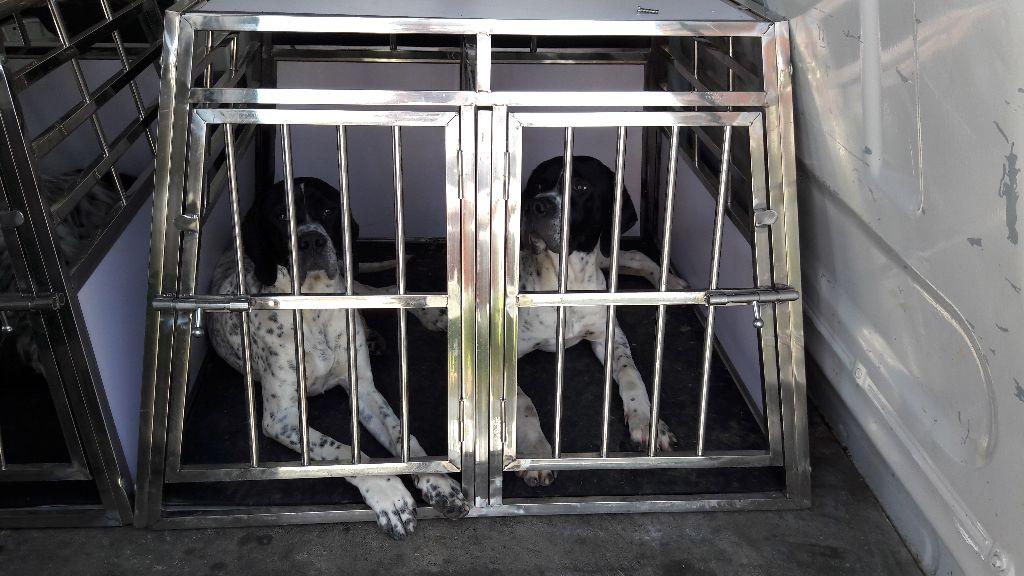 De La Belle Du Bois Jolly - Nouvelles cages de transport ESRAA