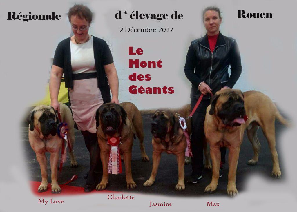 Elevage Du Mont Des Géants