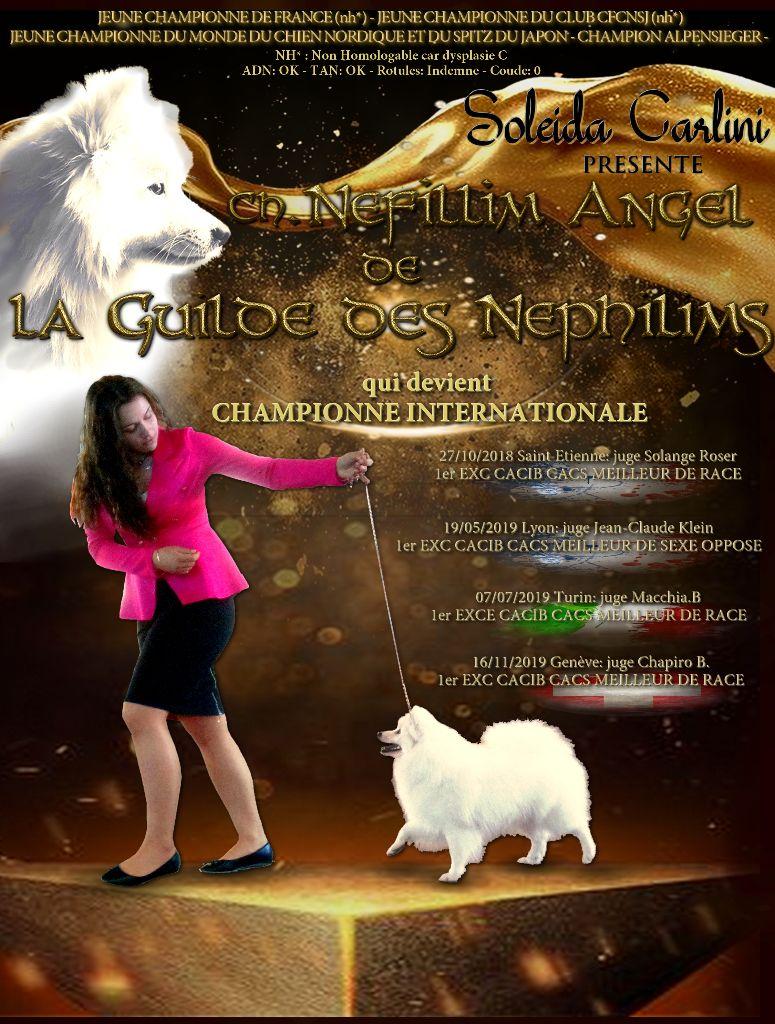 De La Guilde Des Néphilims - nouvelle championne internationale a la Guilde <3