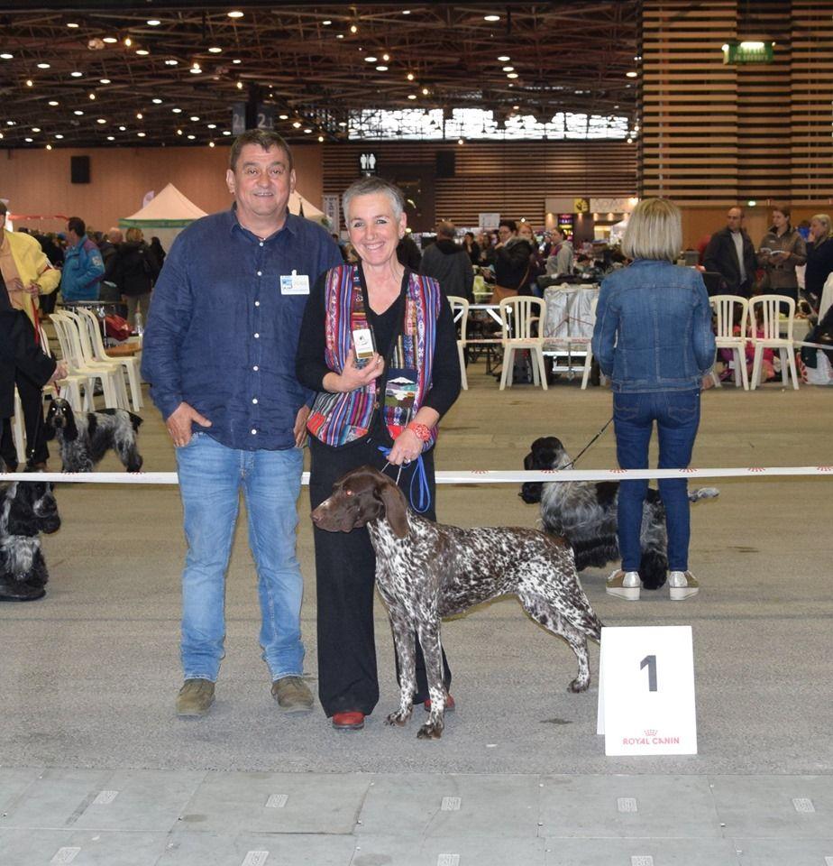 du vallon de Beaudini - Exposition internationale de Lyon 19 Mai 2019 femelle