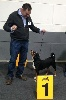 - Luxembourg 92th International Dogshow avec Appie