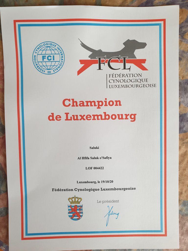 Al Hfifa Saluk - O SAFIYA officiellement Championne du Luxembourg