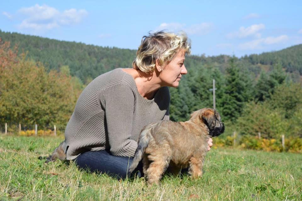 Accueil - Elevage Des Gos Du Pilat - eleveur de chiens