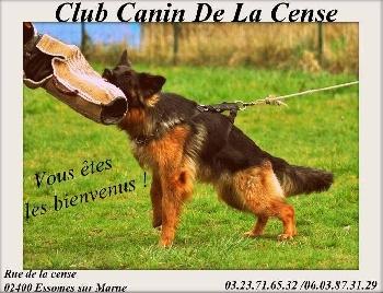 club canin 65