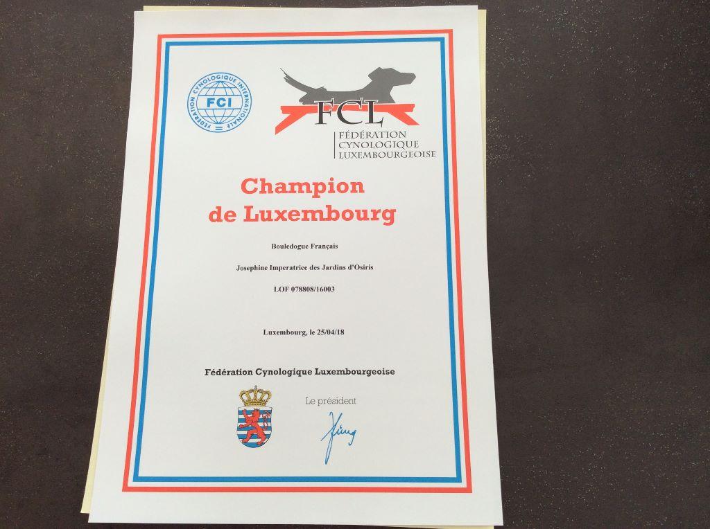 Des Perles Des Allenisses - Championne du Luxembourg