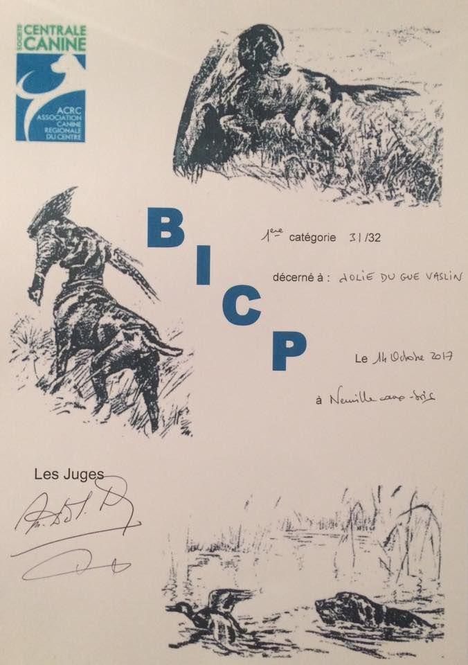 Publication : De La Plaine D'herbaumé